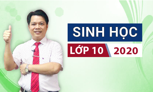 Khóa Sinh Học 10 - 2020