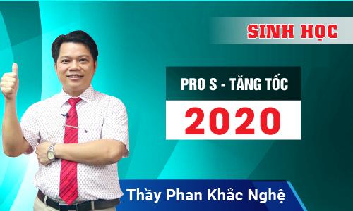 Pro S Tăng tốc 2020